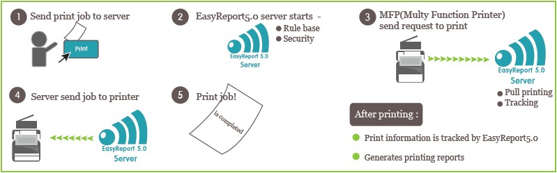 Easy Report workflow